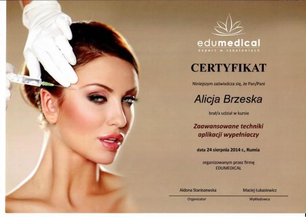 certyfikat dla Alicji Brzeskiej - Zaawansowane techniki aplikacji wypełniaczy